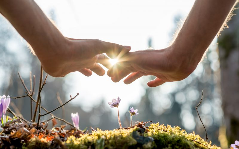 How Reiki Raises Your Energetic Vibration + Why It Matters