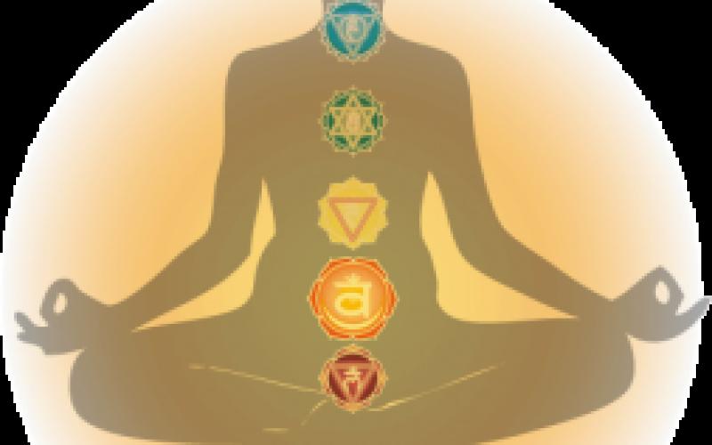 Harmonizing The Energy Body – Chakra Anatomy – Sacral Chakra