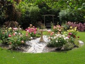 best-photo-backyard-rose-garden-outdoors-water-fountain-grass-chair-exterior-flower-plant-tree-appealing