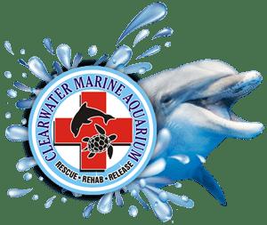 https://www.thesoulmedic.com/wp-content/uploads/clearwater-marine-aquarium-1.png