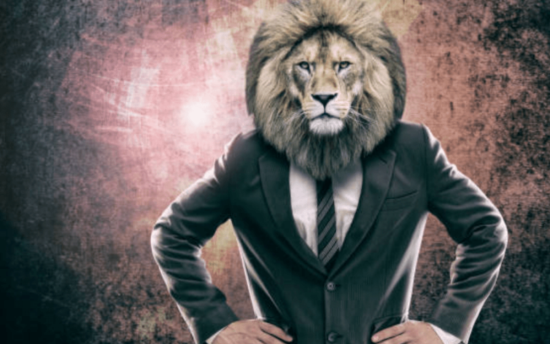 Full Moon In Leo – An Ego War