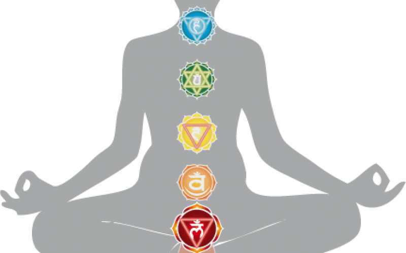 Harmonizing The Energy Body – Chakra Anatomy – Root Chakra